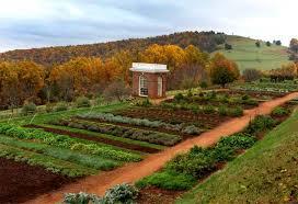 garden history matters thos jefferson the vegetable gardener