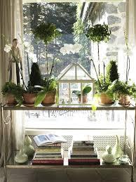 Topiaries Plants - 165 best topiary plants u0026 gardens images on pinterest backyard