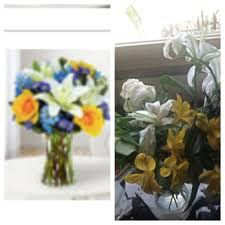 flowers today blooms today 46 photos 61 reviews florists 15405