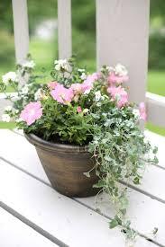 Gardening Tips For Summer - how to arrange garden containers gardens summer and gardening