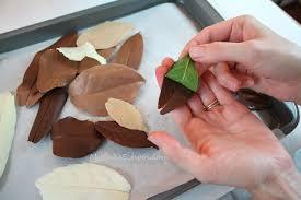 How To Make Decorative Chocolate How To Make Chocolate Leaves Free Autumn Cake Tutorial My Cake