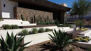 Modern Front Yard Desert Landscaping With Palm Tree And Great First Impressions 2015 Fresh Faces Of Design Awards Hgtv