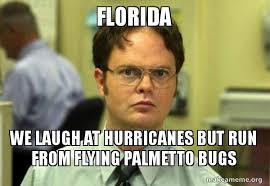 Florida Meme - florida we laugh at hurricanes but run from flying palmetto bugs
