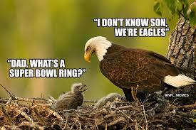 Philadelphia Eagle Memes - today we gather to say rip to the greatest philadelphia eagles no