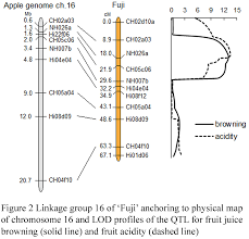 Linkage Map Genetic And Physical Mapping Of Qtls For Fruit Juice Browning And
