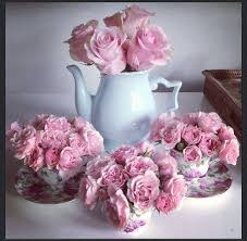 roses teacups teacups and pink roses pictures photos and images for