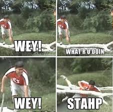 What R Memes - edgar fall stahp know your meme