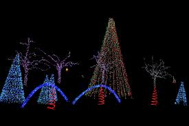 national zoo christmas lights file zoolights 2010 holiday lights at the national zoo 5308930476