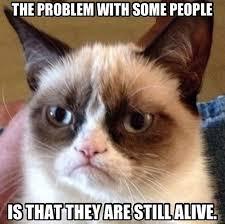 Grumpy Cat Monday Meme - grumpy cat unanything wiki fandom powered by wikia