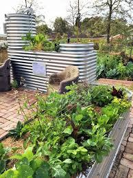 self sustaining garden ecopops self sustaining pop up gardens michael mobbs