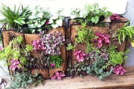 Vertical Garden For Balcony - small garden ideas bakker com