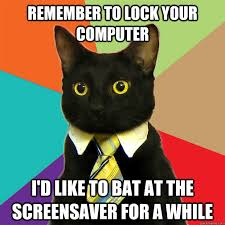 remember to lock your computer cat meme cat planet cat planet
