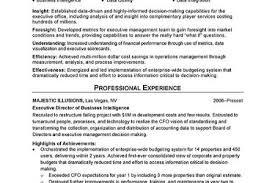 saas resume sles 10 images application development manager executive resume exles 7 executive summary resume sle cio
