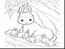 outstanding cute baby bunny coloring pages rabbit coloring