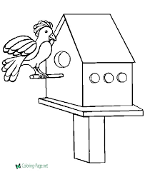 house bird coloring pages