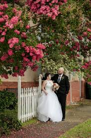blooms flowers wedding with pink crepe myrtle blooms flowers home