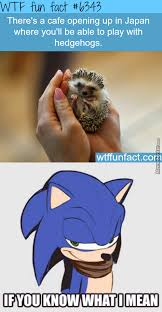 Sonic The Hedgehog Meme - sonic the hedgehog memes best collection of funny sonic the