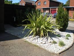 low maintenance front garden grows on you