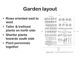 vegetable gardening ppt video online download