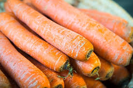 carrots vegetables thanksgiving free photo on pixabay