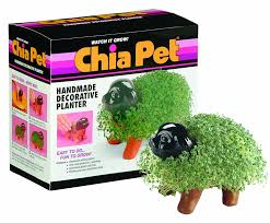 amazon com chia pet handmade decorative planter puppy 1 kit