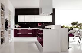 Distressed Painted Kitchen Cabinets Kitchen Painting Kitchen Cabinets Quality Kitchen Cabinets