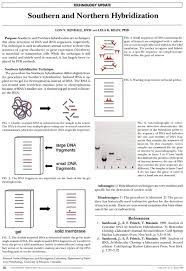 gene quantification u0026 mrna analysis methods u0026 mrna quantification