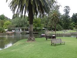 melbourne royal botanic gardens u2013 my walkabout plants