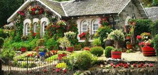 cottage with gorgeous flowers everywhere sheila u0027s heart