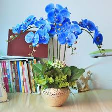 Blue Orchid Flower High Quality Pu Artificial Blue Orchid Plants Orchid Flowers In