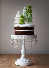 Christmas Cake Decorations Wellington by