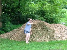 how to get free woodchips we got real