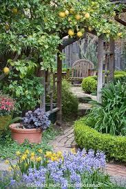 10 floral garden gates in bold color garden lovers club