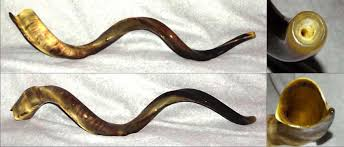 shofar mouthpiece shofar store buy top quality shofars expertly handcrafted