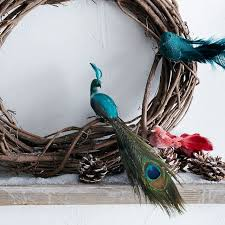 feathered bird tree ornaments rainforest islands ferry