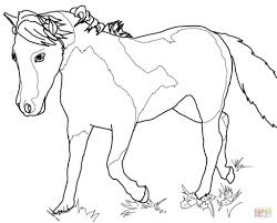 miniature horse coloring page archives mente beta most complete