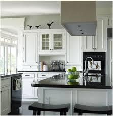 Kitchen Design Black And White The 25 Best Kitchen Black Appliances Ideas On Pinterest Kitchen
