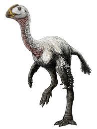 elmisaurus pictures u0026 facts the dinosaur database