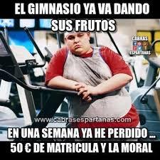 Memes De Gym En Espa Ol - deluxe memes de gym en español 80 skiparty wallpaper