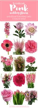 wedding flowers guide the essential pink wedding flowers guide types of pink flowers