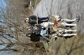 maryland dog sledding photos from previous season u0027s individual