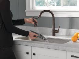 Single Handle Pull Down Kitchen Faucet by Delta Essa Single Handle Pull Down Standard Kitchen Faucet