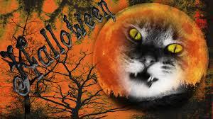 1600x900 free desktop wallpaper downloads halloween 1600x900