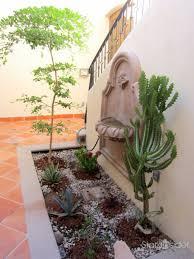 ideas for a desert courtyard garden stark insider