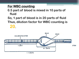 100 manual white blood cell count with hemocytometer lw