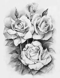 nature pencil sketches gallery archives pencil drawing collection