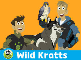 adventures of the little koala amazon com wild kratts season 3 amazon digital services llc