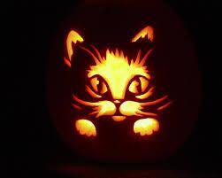 halloween background cat cute halloween wallpaper backgrounds top hd halloween pics ze