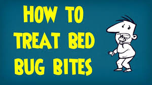 Remedy For Bed Bug Bites How To Treat Bed Bug Bites Treating Bites From Bugs And Insects