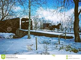 winter scene with amish buggy stock image image 21997791